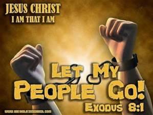 exodus 8